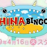 『HINABINGO!』(ひなビンゴ)の見逃し動画配信を無料で観る方法!放送地域情報も!