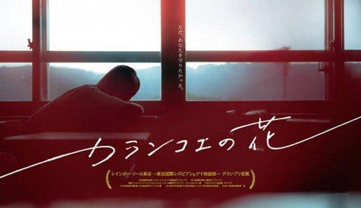 『カランコエの花』フル動画を無料で観る方法!LGBTをテーマにした今田美桜主演の話題作!
